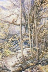 Old Forest by Alan Lee